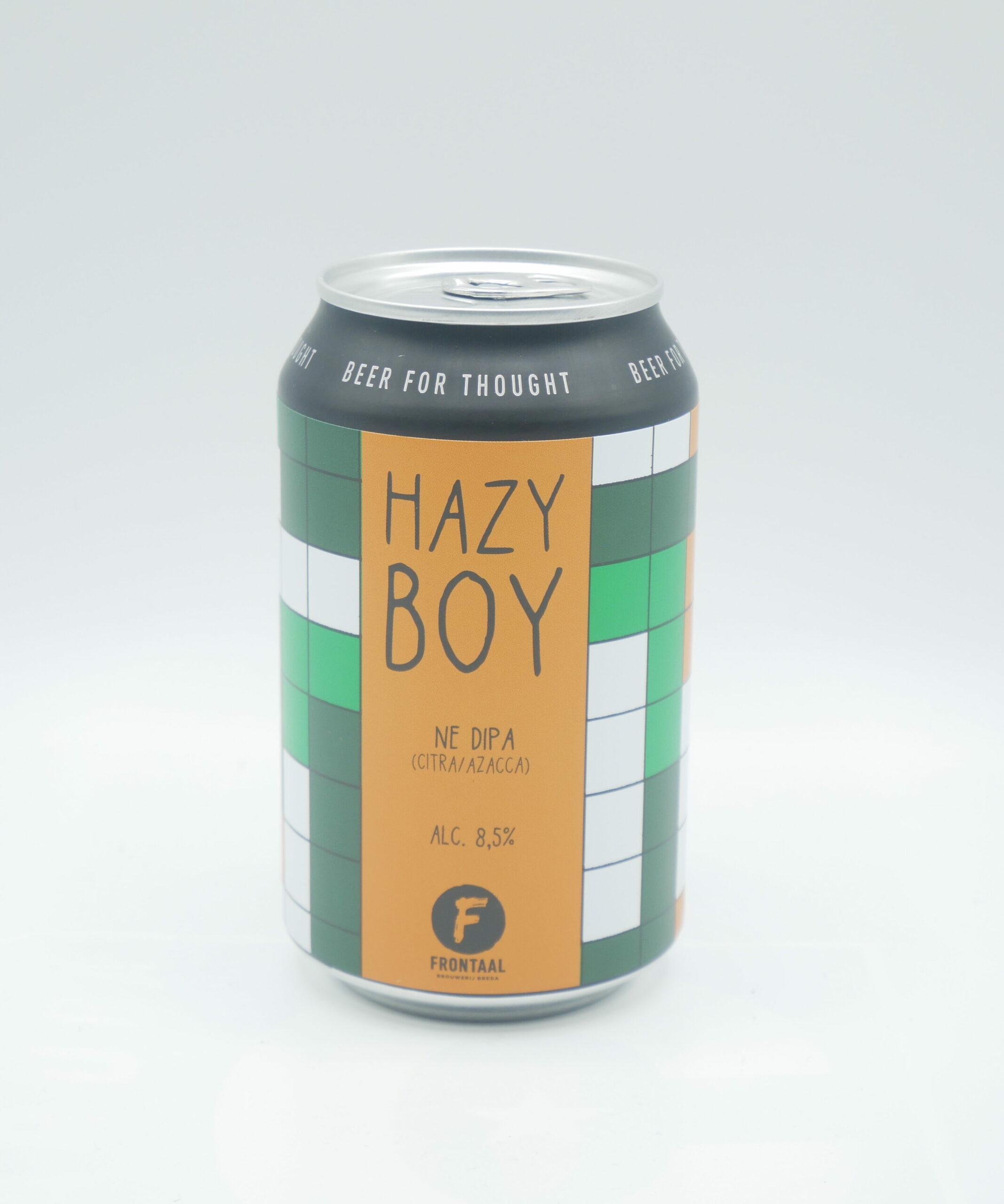 Img Hazy Boy